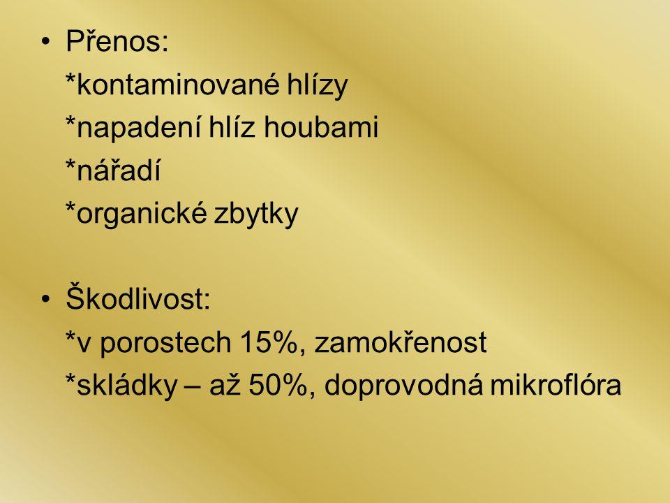 Přenos: *mycelium na klubíčkách, rostlinných zbytcích *vlhko, nižší teploty do 18°C Škodlivost: *semenačka 25%