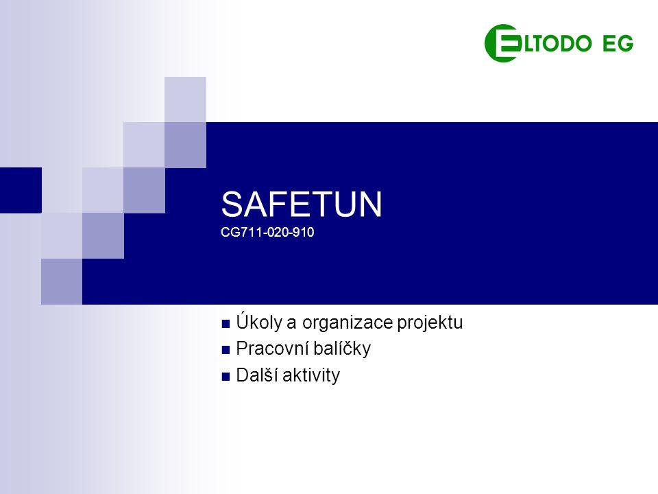 SAFETUN CG711-020-910 Úkoly a organizace projektu Pracovní balíčky Další aktivity