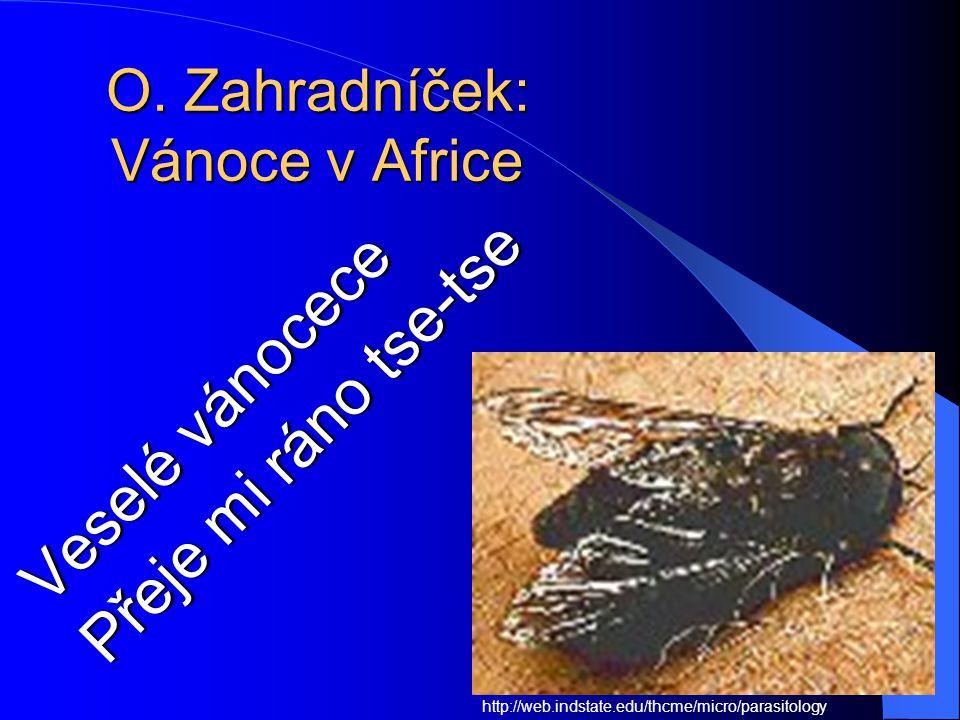 Moucha tse-tse (Glossina), přenašeč spavé nemoci http://web.indstate.edu/thcme/micro/parasitology