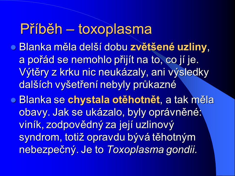 Toxoplasma gondii Je to prvok, který je přenášen kočkami, i když chovatelé psů jsou ve větším riziku (protože na srsti donesou domů částečky kočičího