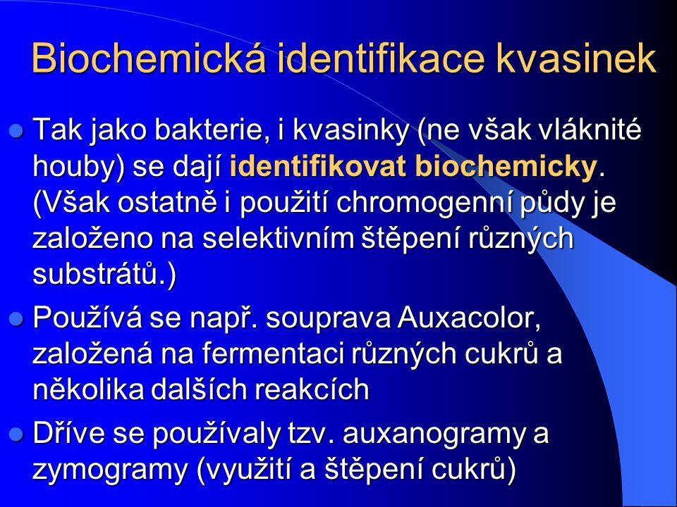C. albicans C. glabrata C. tropicalis C. krusei www.medmicro.info