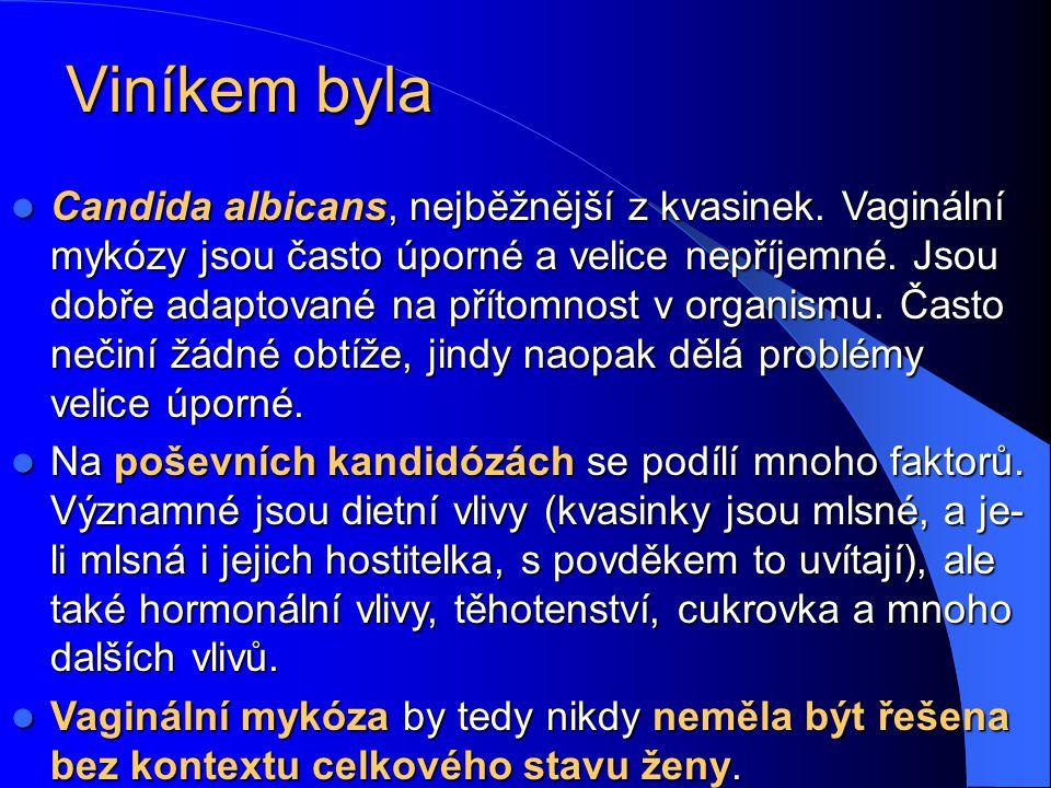 Viníkem byla Candida albicans, nejběžnější z kvasinek.