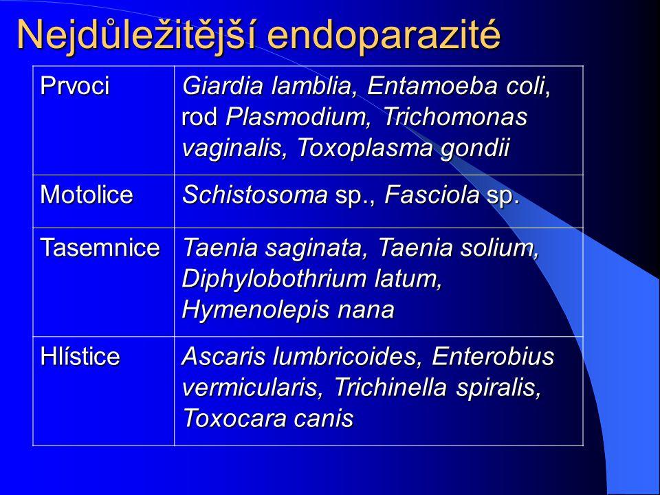 b) Podle lokalizace procesu Ektoparazité – parazitují na povrchu těla Ektoparazité – parazitují na povrchu těla Endoparazité – parazitují uvnitř těla