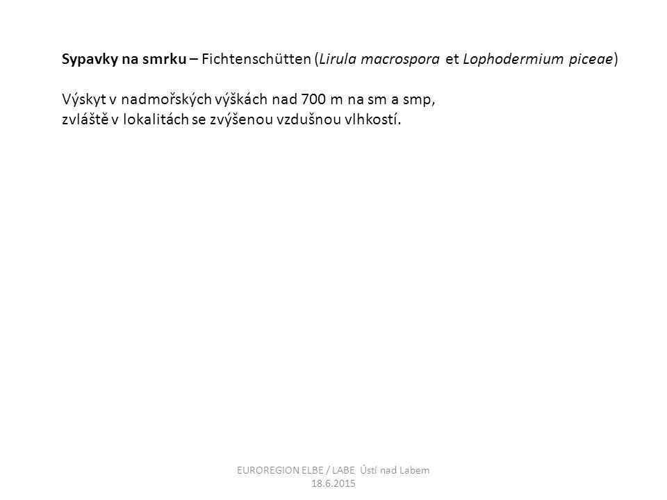 Sypavky na smrku – Fichtenschütten (Lirula macrospora et Lophodermium piceae) Výskyt v nadmořských výškách nad 700 m na sm a smp, zvláště v lokalitách