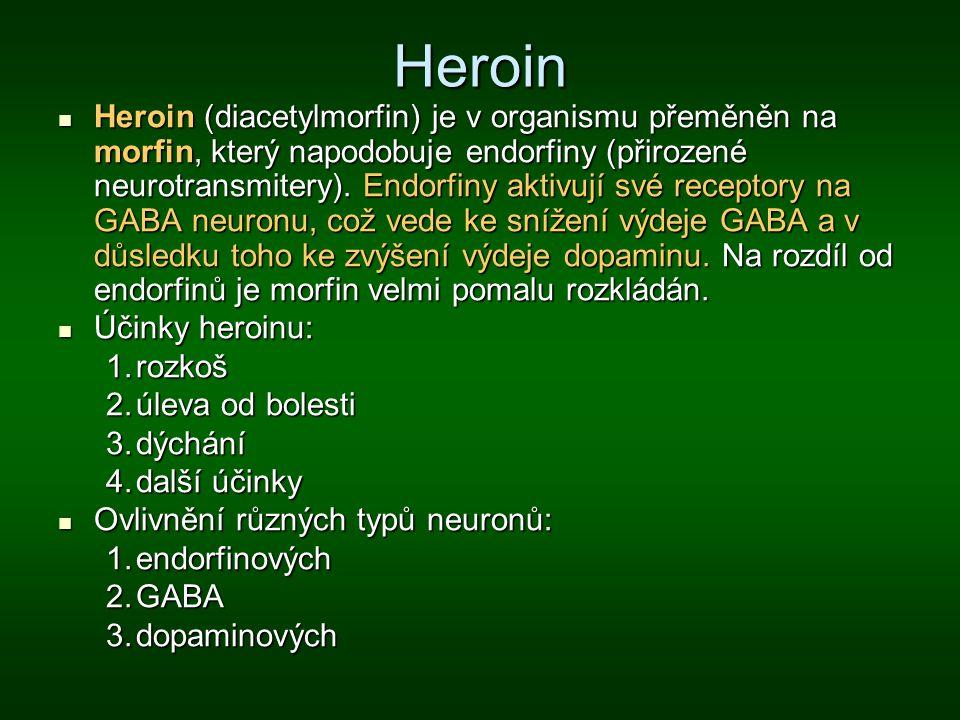 Heroin Heroin (diacetylmorfin) je v organismu přeměněn na morfin, který napodobuje endorfiny (přirozené neurotransmitery). Endorfiny aktivují své rece