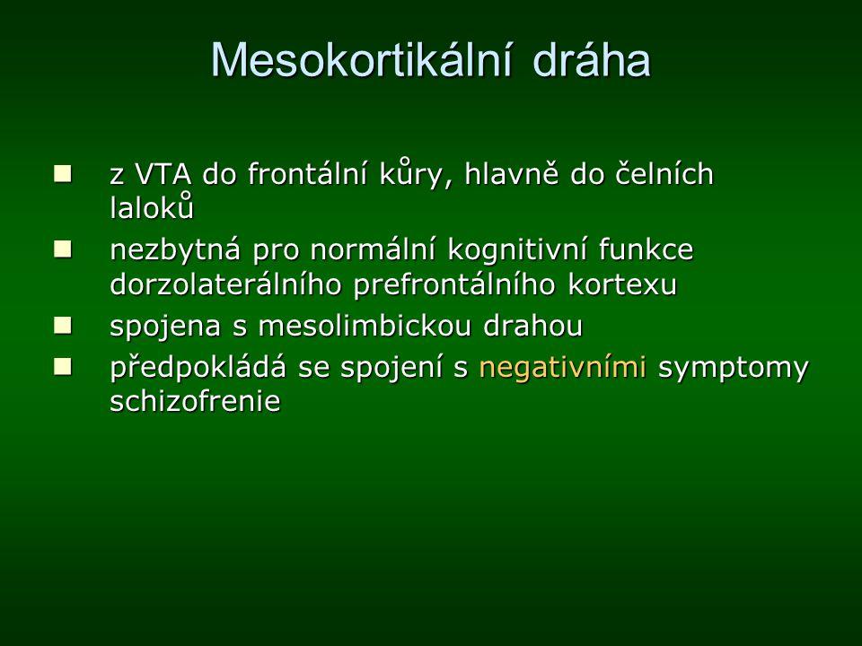 Mesokortikální dráha z VTA do frontální kůry, hlavně do čelních laloků z VTA do frontální kůry, hlavně do čelních laloků nezbytná pro normální kogniti