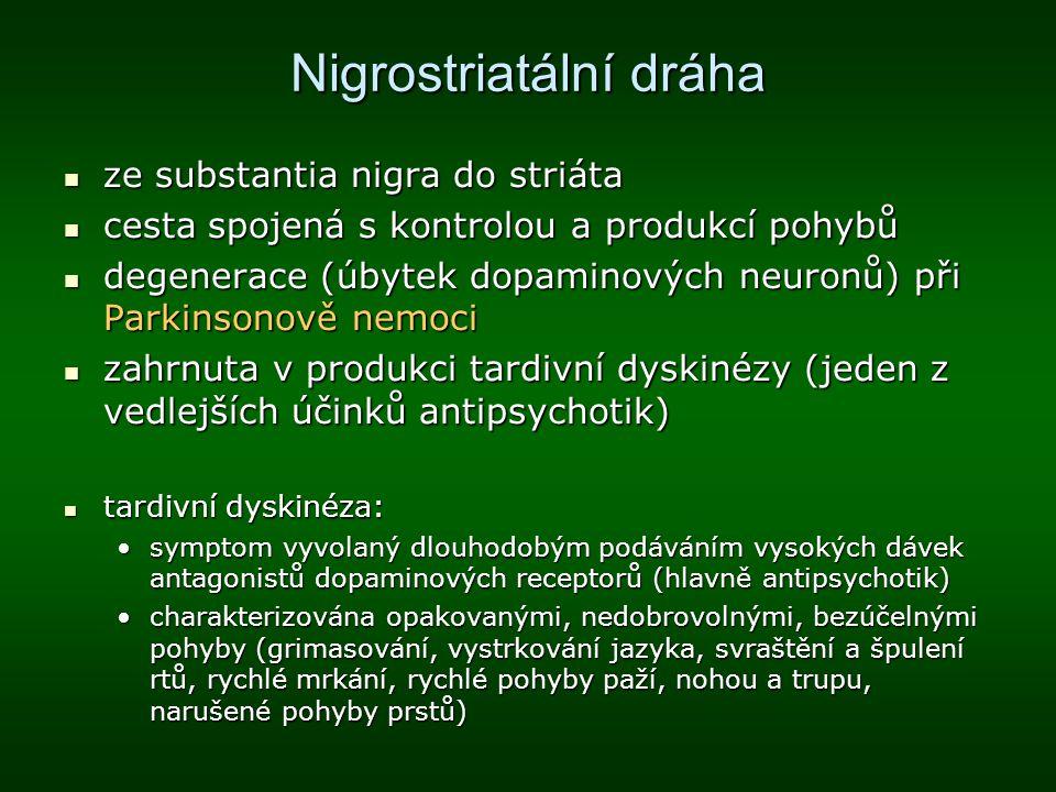 Nigrostriatální dráha ze substantia nigra do striáta ze substantia nigra do striáta cesta spojená s kontrolou a produkcí pohybů cesta spojená s kontro