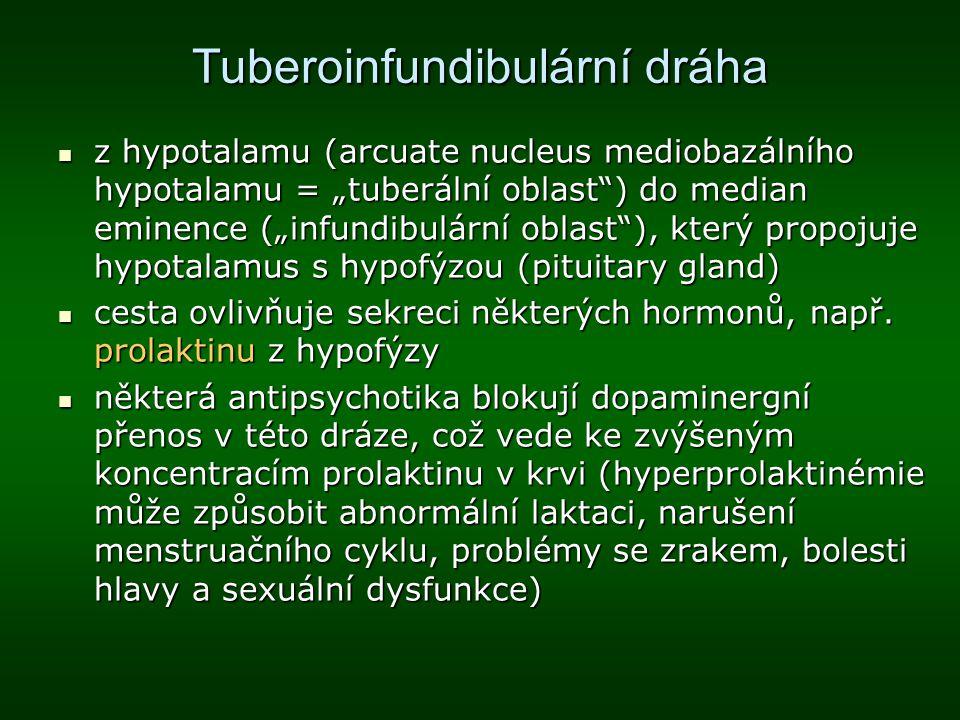 """Tuberoinfundibulární dráha z hypotalamu (arcuate nucleus mediobazálního hypotalamu = """"tuberální oblast"""") do median eminence (""""infundibulární oblast""""),"""