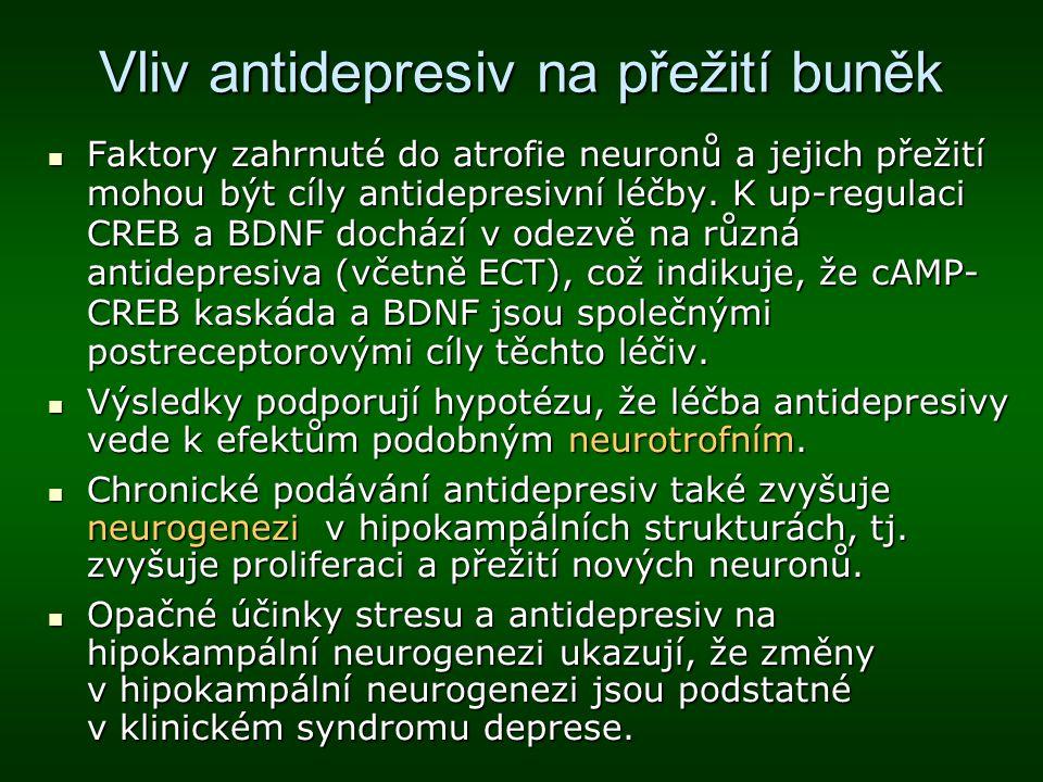 Vliv antidepresiv na přežití buněk Faktory zahrnuté do atrofie neuronů a jejich přežití mohou být cíly antidepresivní léčby. K up-regulaci CREB a BDNF