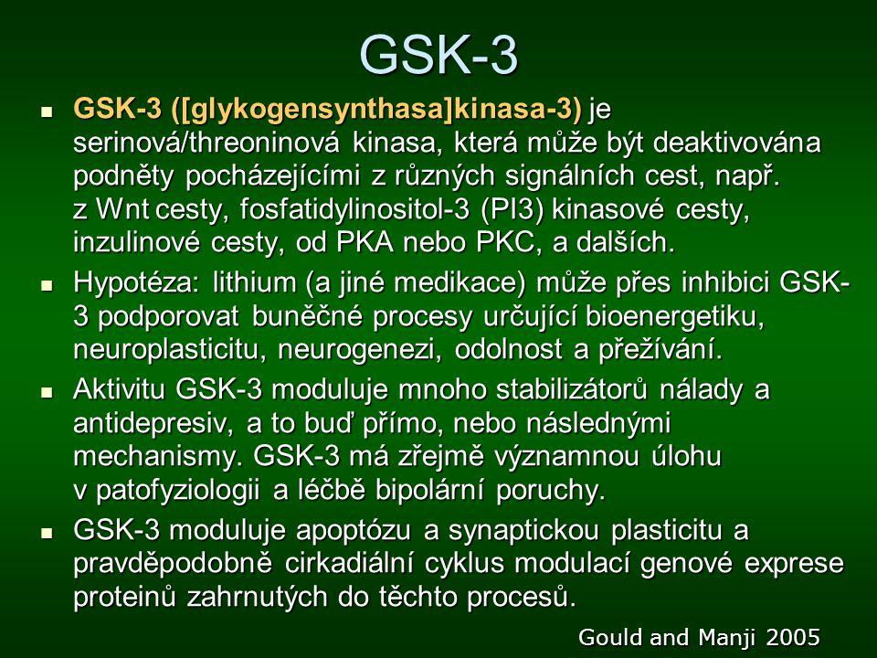 GSK-3 GSK-3 ([glykogensynthasa]kinasa-3) je serinová/threoninová kinasa, která může být deaktivována podněty pocházejícími z různých signálních cest,