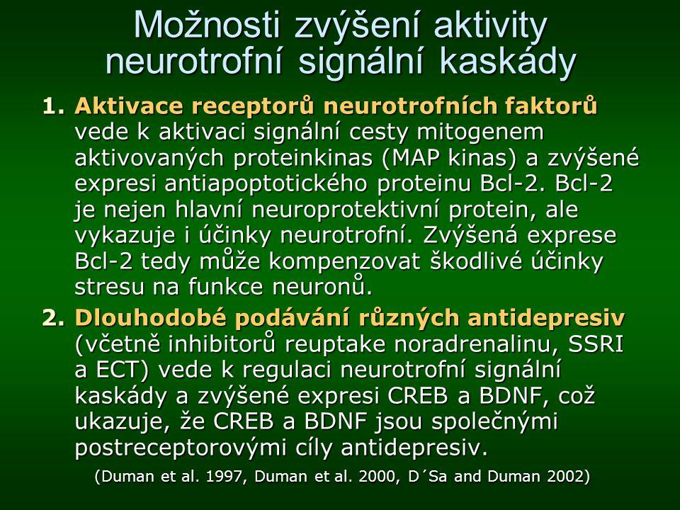 Možnosti zvýšení aktivity neurotrofní signální kaskády 1.Aktivace receptorů neurotrofních faktorů vede k aktivaci signální cesty mitogenem aktivovanýc