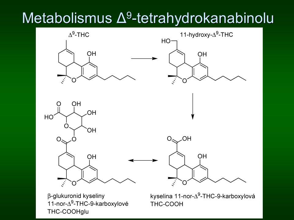 Metabolismus Δ 9 -tetrahydrokanabinolu