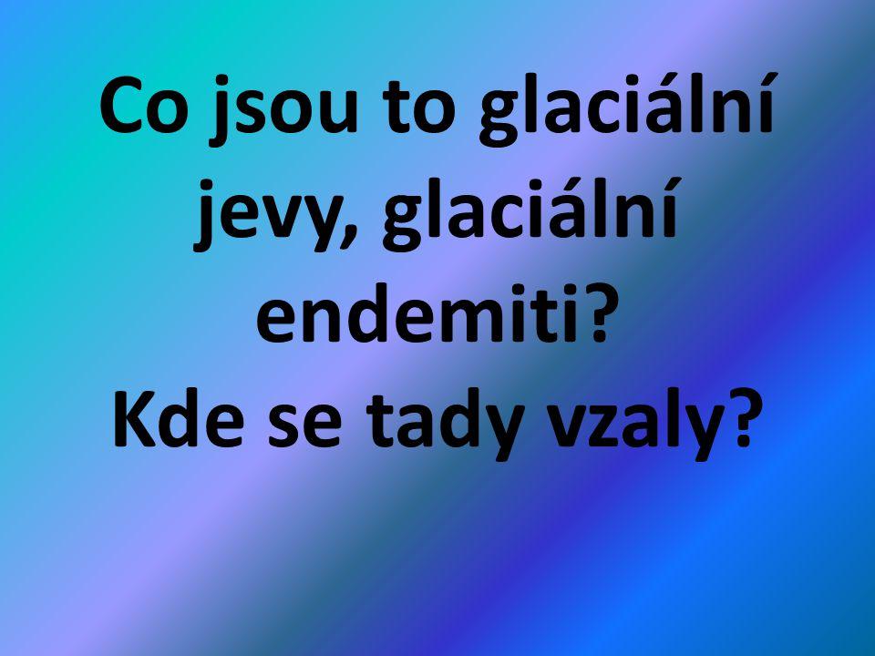 Co jsou to glaciální jevy, glaciální endemiti? Kde se tady vzaly?