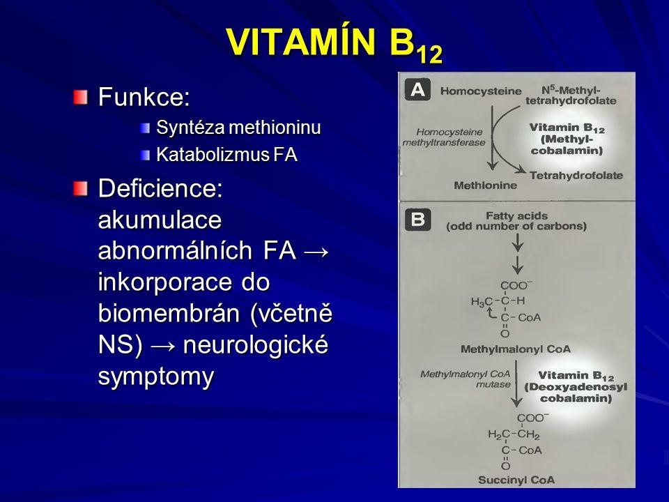 VITAMÍN B 12 Funkce: Syntéza methioninu Katabolizmus FA Deficience: akumulace abnormálních FA → inkorporace do biomembrán (včetně NS) → neurologické symptomy