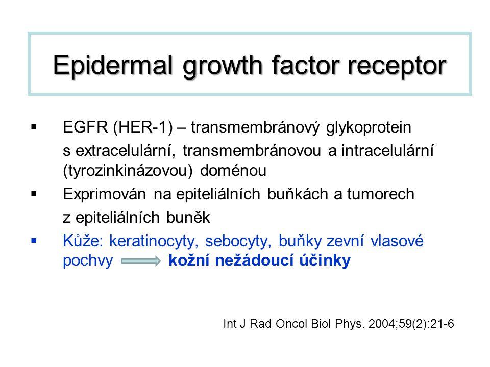  EGFR (HER-1) – transmembránový glykoprotein s extracelulární, transmembránovou a intracelulární (tyrozinkinázovou) doménou  Exprimován na epiteliál