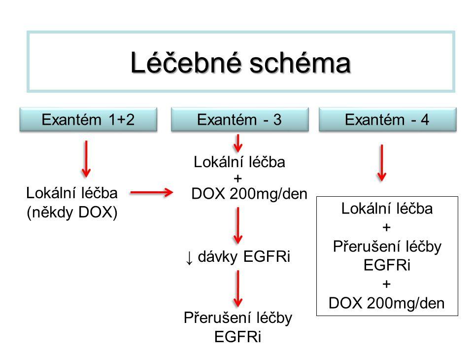 Léčebné schéma Exantém 1+2 Přerušení léčby EGFRi ↓ dávky EGFRi Lokální léčba (někdy DOX) DOX 200mg/den Lokální léčba + + Přerušení léčby EGFRi + DOX 2