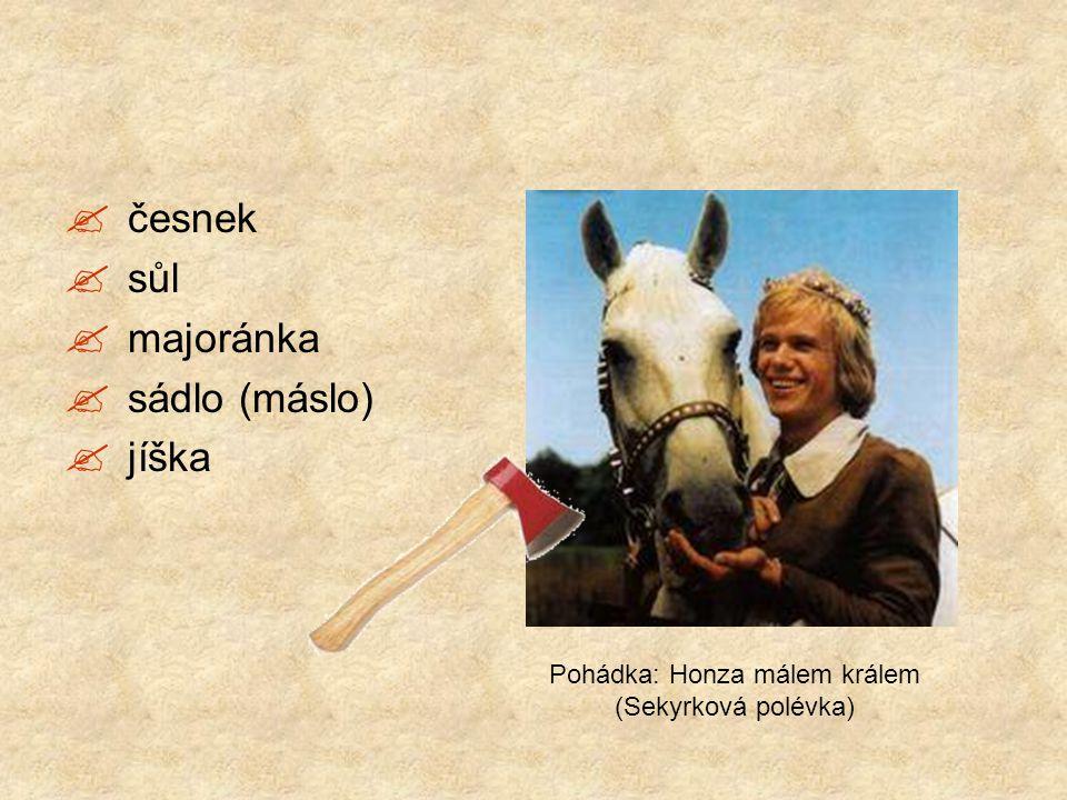  česnek  sůl  majoránka  sádlo (máslo)  jíška Pohádka: Honza málem králem (Sekyrková polévka)