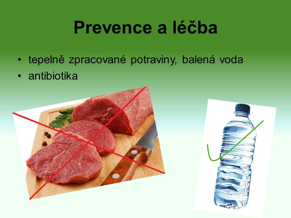Prevence a léčba tepelně zpracované potraviny, balená voda antibiotika
