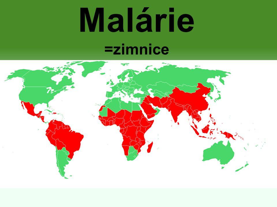 Malárie =zimnice