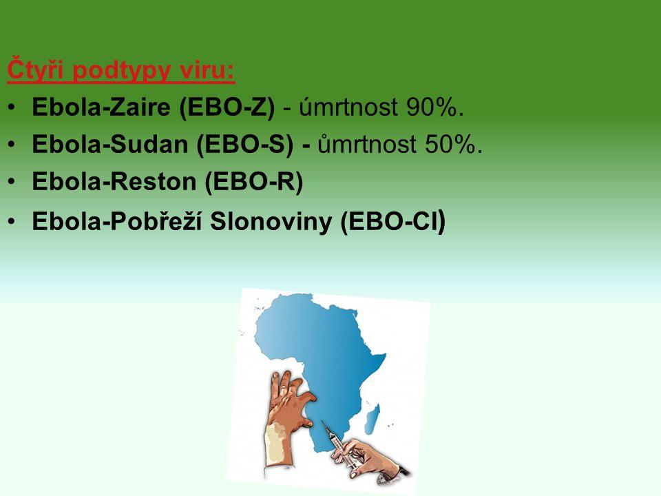 Čtyři podtypy viru: Ebola-Zaire (EBO-Z) - úmrtnost 90%. Ebola-Sudan (EBO-S) - ůmrtnost 50%. Ebola-Reston (EBO-R) Ebola-Pobřeží Slonoviny (EBO-CI )