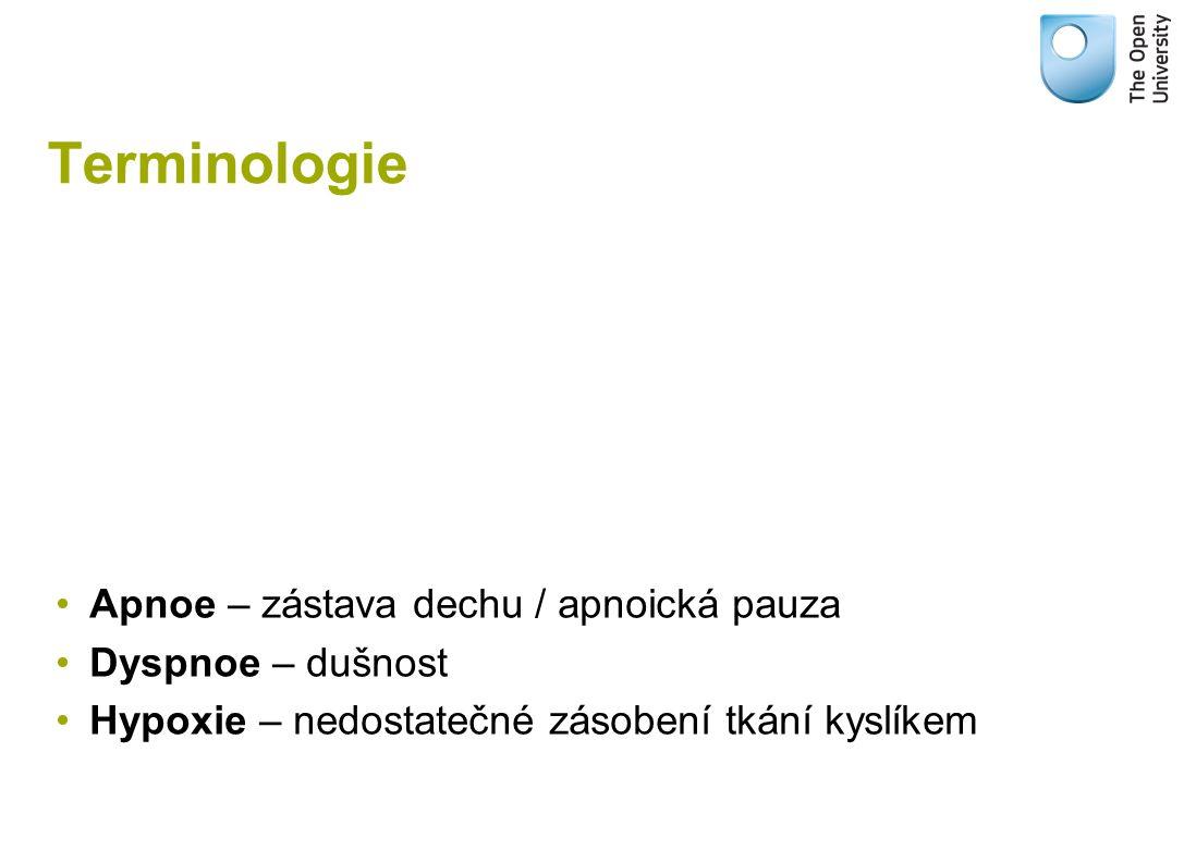 Terminologie Apnoe – zástava dechu / apnoická pauza Dyspnoe – dušnost Hypoxie – nedostatečné zásobení tkání kyslíkem