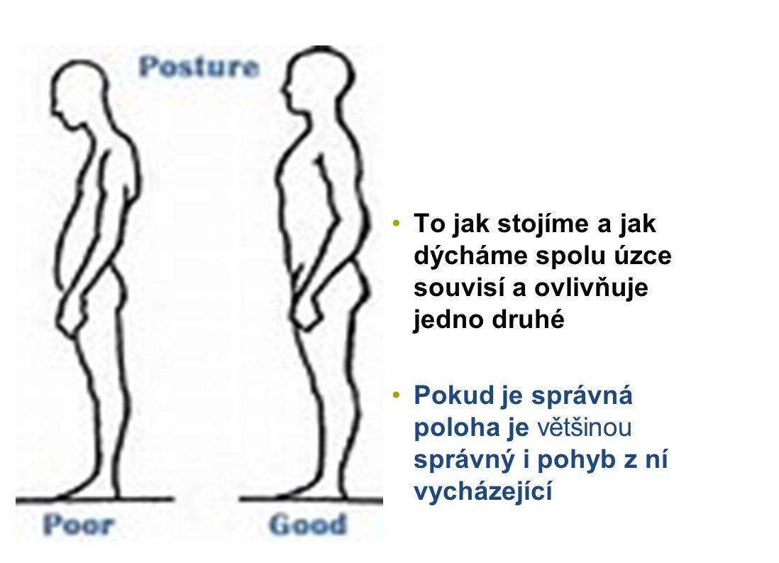 K trvalé nápravě postury dochází až tehdy, když nastane i trvalá změna dechových pohybů Bez vnitřní stabilizace organismu nelze stabilizovat vnější projevy těla (titubace, neklid) Bez vnitřní stability a klidu nelze dosáhnout vnější stability