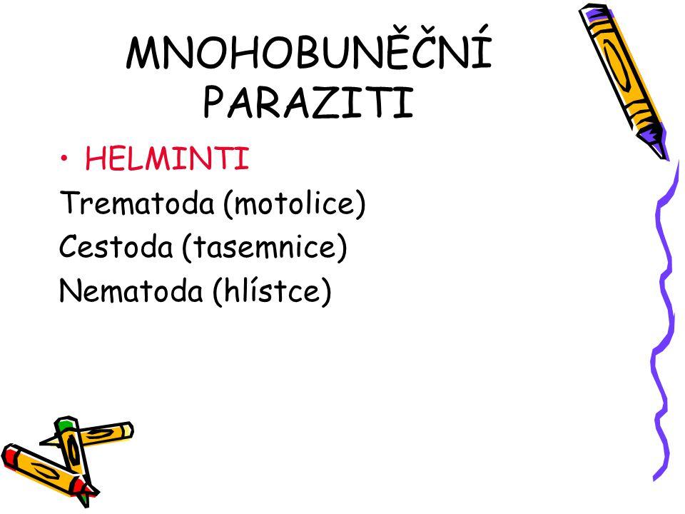 MNOHOBUNĚČNÍ PARAZITI HELMINTI Trematoda (motolice) Cestoda (tasemnice) Nematoda (hlístce)