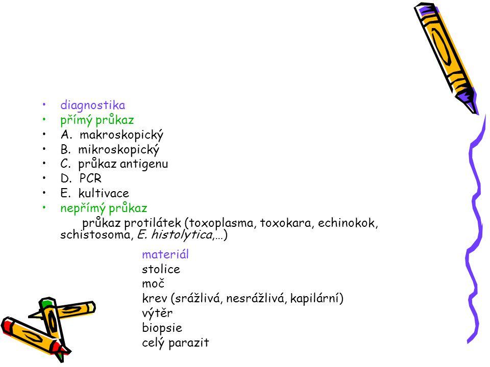 diagnostika přímý průkaz A. makroskopický B. mikroskopický C. průkaz antigenu D. PCR E. kultivace nepřímý průkaz průkaz protilátek (toxoplasma, toxoka