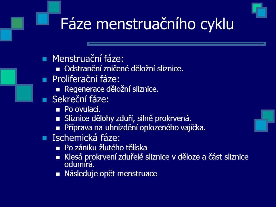 Fáze menstruačního cyklu Menstruační fáze: Odstranění zničené děložní sliznice. Proliferační fáze: Regenerace děložní sliznice. Sekreční fáze: Po ovul