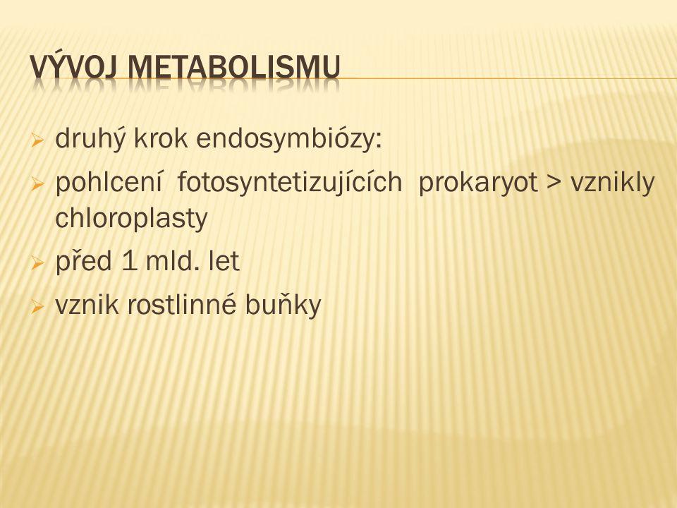  druhý krok endosymbiózy:  pohlcení fotosyntetizujících prokaryot > vznikly chloroplasty  před 1 mld.
