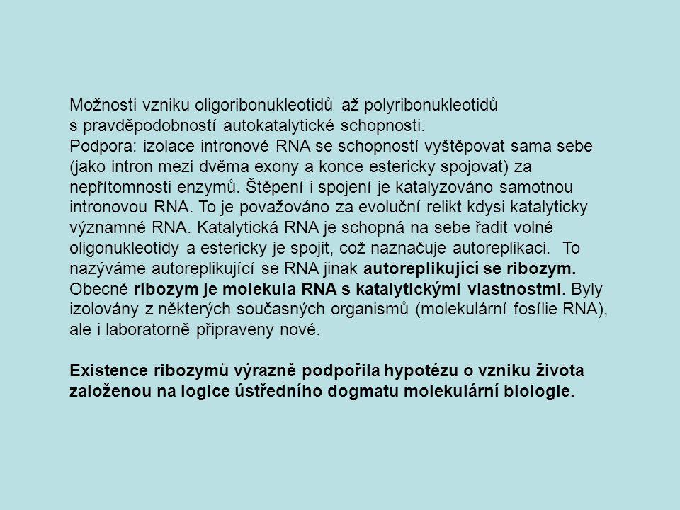 Možnosti vzniku oligoribonukleotidů až polyribonukleotidů s pravděpodobností autokatalytické schopnosti. Podpora: izolace intronové RNA se schopností