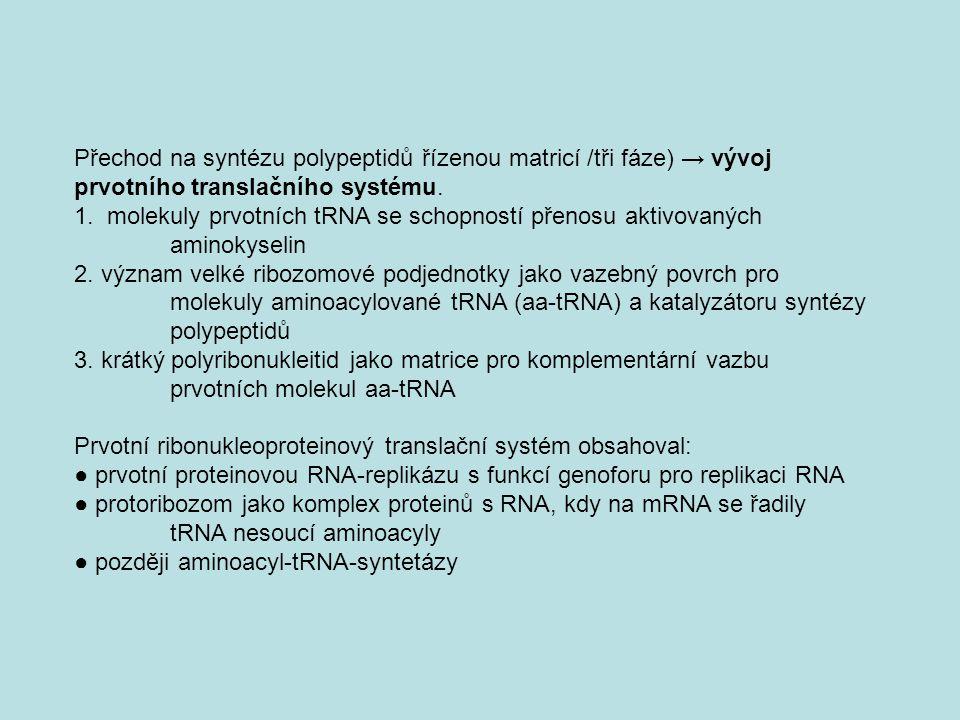 Přechod na syntézu polypeptidů řízenou matricí /tři fáze) → vývoj prvotního translačního systému. 1. molekuly prvotních tRNA se schopností přenosu akt