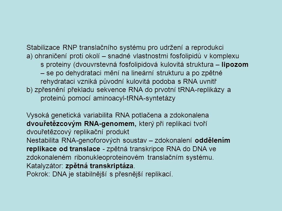 Stabilizace RNP translačního systému pro udržení a reprodukci a) ohraničení proti okolí – snadné vlastnostmi fosfolipidů v komplexu s proteiny (dvouvr