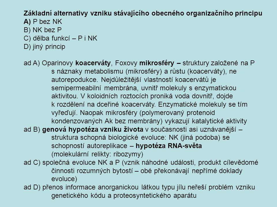 Základní alternativy vzniku stávajícího obecného organizačního principu A) P bez NK B) NK bez P C) dělba funkcí – P i NK D) jiný princip ad A) Oparino