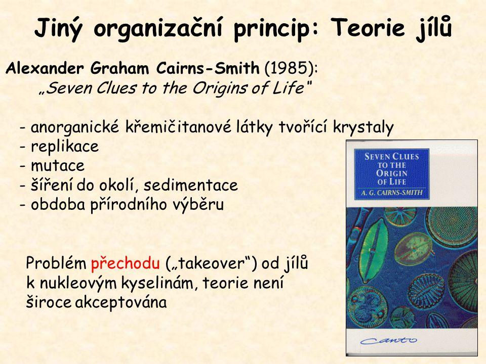"""Jiný organizační princip: Teorie jílů Alexander Graham Cairns-Smith (1985): """"Seven Clues to the Origins of Life"""" - anorganické křemičitanové látky tvo"""