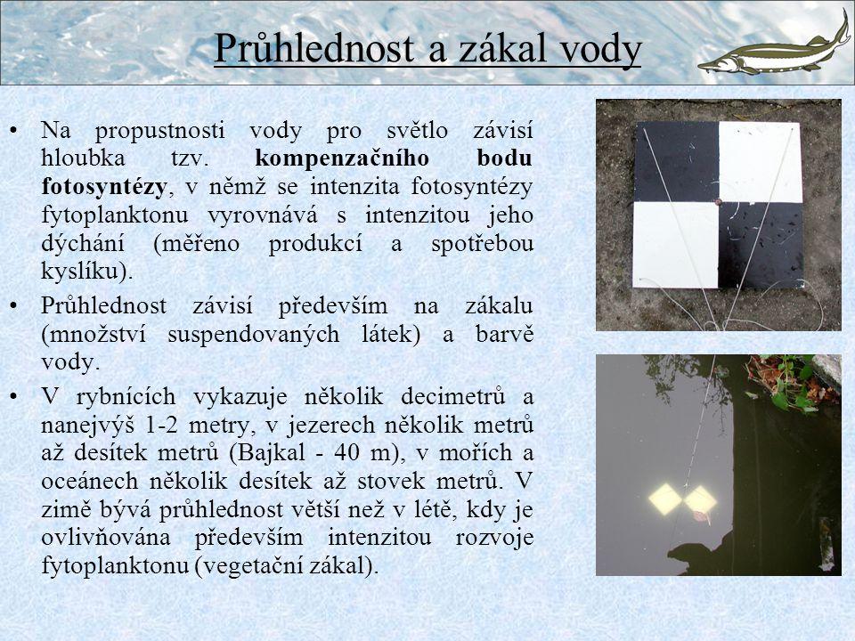 Průhlednost a zákal vody Na propustnosti vody pro světlo závisí hloubka tzv.