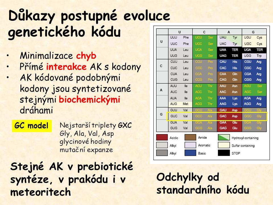 Důkazy postupné evoluce genetického kódu Minimalizace chyb Přímé interakce AK s kodony AK kódované podobnými kodony jsou syntetizované stejnými biochemickými dráhami Stejné AK v prebiotické syntéze, v prakódu i v meteoritech GC model Nejstarší triplety GXC Gly, Ala, Val, Asp glycinové hodiny mutační expanze Odchylky od standardního kódu