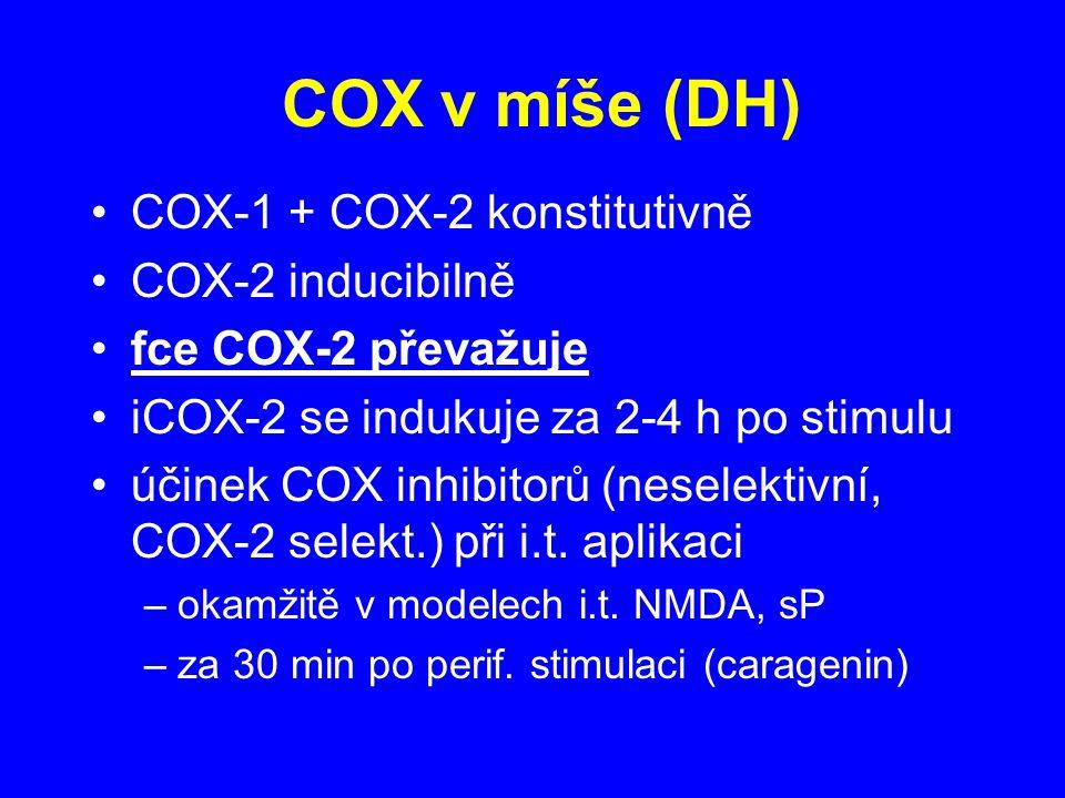 COX v míše (DH) COX-1 + COX-2 konstitutivně COX-2 inducibilně fce COX-2 převažuje iCOX-2 se indukuje za 2-4 h po stimulu účinek COX inhibitorů (neselektivní, COX-2 selekt.) při i.t.