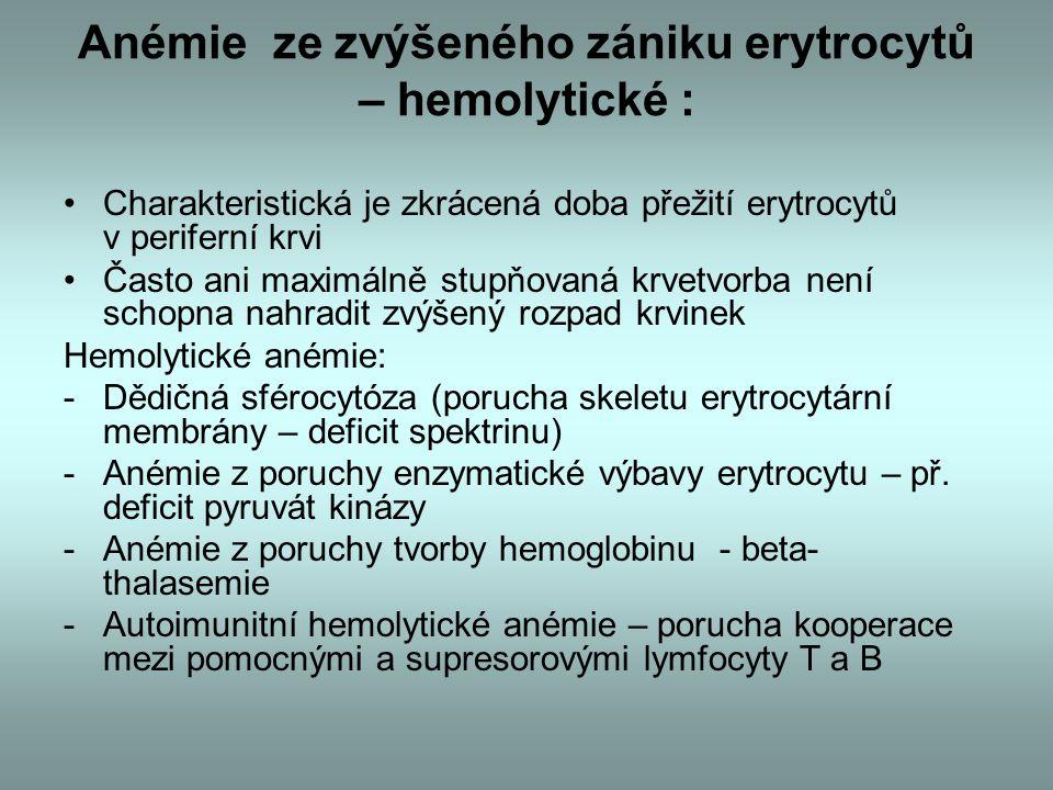 Anémie ze zvýšeného zániku erytrocytů – hemolytické : Charakteristická je zkrácená doba přežití erytrocytů v periferní krvi Často ani maximálně stupňovaná krvetvorba není schopna nahradit zvýšený rozpad krvinek Hemolytické anémie: -Dědičná sférocytóza (porucha skeletu erytrocytární membrány – deficit spektrinu) -Anémie z poruchy enzymatické výbavy erytrocytu – př.