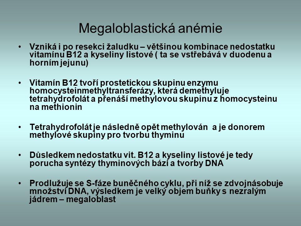 Megaloblastická anémie Vzniká i po resekci žaludku – většinou kombinace nedostatku vitamínu B12 a kyseliny listové ( ta se vstřebává v duodenu a horním jejunu) Vitamín B12 tvoří prostetickou skupinu enzymu homocysteinmethyltransferázy, která demethyluje tetrahydrofolát a přenáší methylovou skupinu z homocysteinu na methionin Tetrahydrofolát je následně opět methylován a je donorem methylové skupiny pro tvorbu thyminu Důsledkem nedostatku vit.