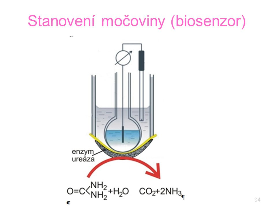 34 Stanovení močoviny (biosenzor)