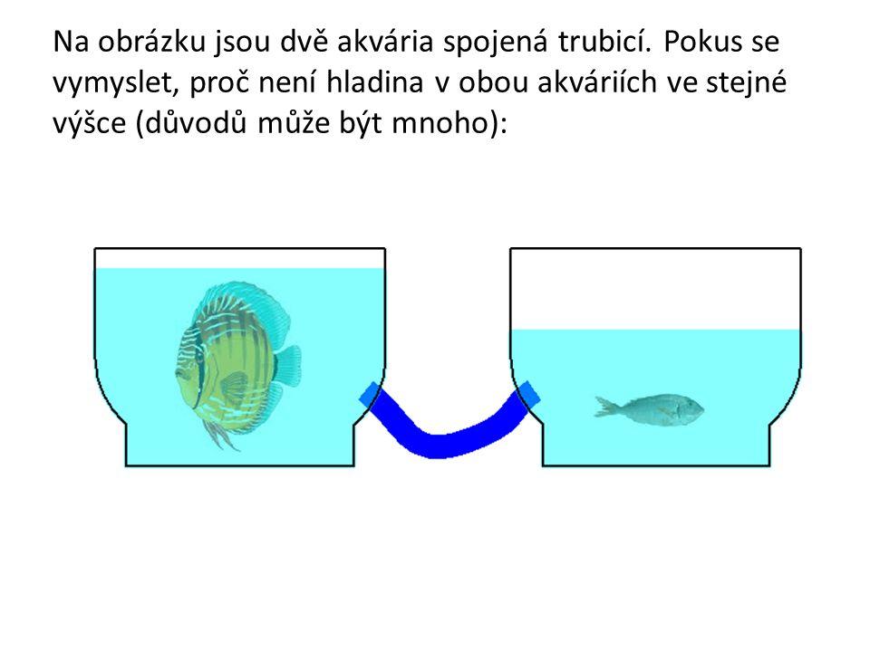 Na obrázku jsou dvě akvária spojená trubicí. Pokus se vymyslet, proč není hladina v obou akváriích ve stejné výšce (důvodů může být mnoho):