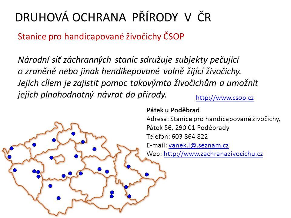 DRUHOVÁ OCHRANA PŘÍRODY V ČR Národní síť záchranných stanic sdružuje subjekty pečující o zraněné nebo jinak hendikepované volně žijící živočichy. Jeji