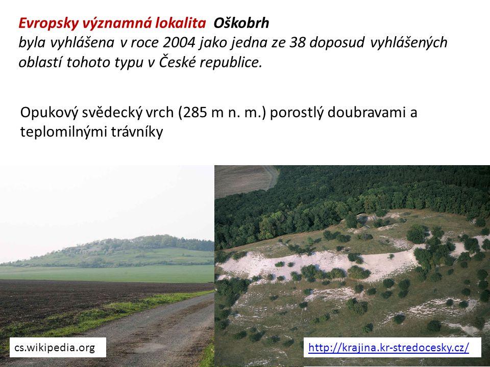 Evropsky významná lokalita Oškobrh byla vyhlášena v roce 2004 jako jedna ze 38 doposud vyhlášených oblastí tohoto typu v České republice. Opukový svěd