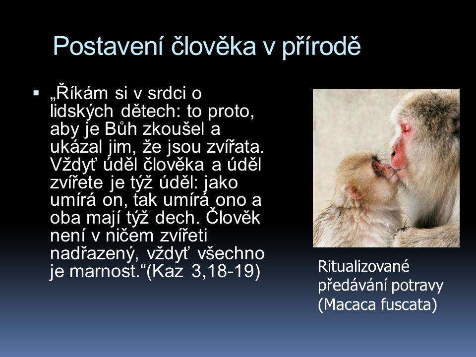 """Postavení člověka v přírodě  """"Říkám si v srdci o lidských dětech: to proto, aby je Bůh zkoušel a ukázal jim, že jsou zvířata. Vždyť úděl člověka a úd"""