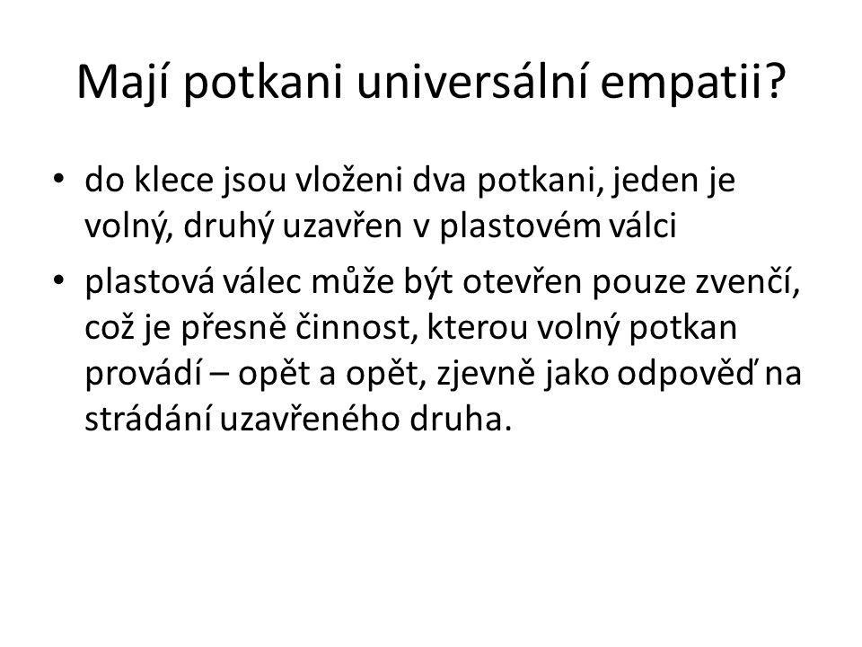 Mají potkani universální empatii.