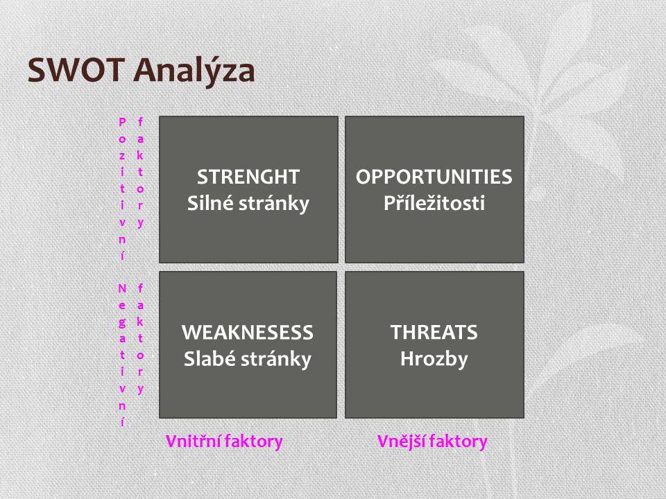 Příklady SWOT faktorů Vnitřní faktory: Kvalita produktů Schopnosti, zkušenosti a efektivita zaměstnanců Práce managementu Hardware a technologie Vnější faktory: Konkurence Politická situace Finanční, přírodní a technické faktory