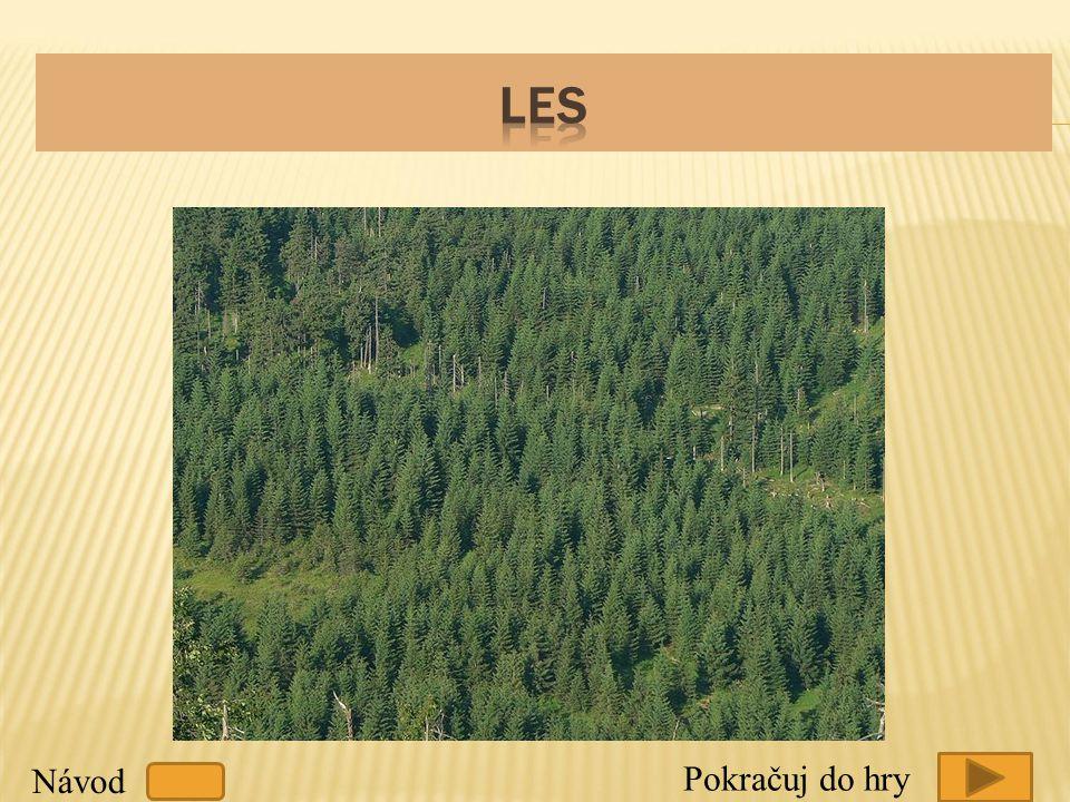  Co to je přirozený les .