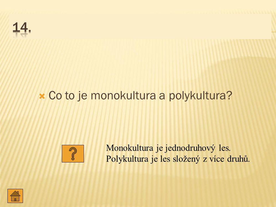  Co to je monokultura a polykultura.Monokultura je jednodruhový les.