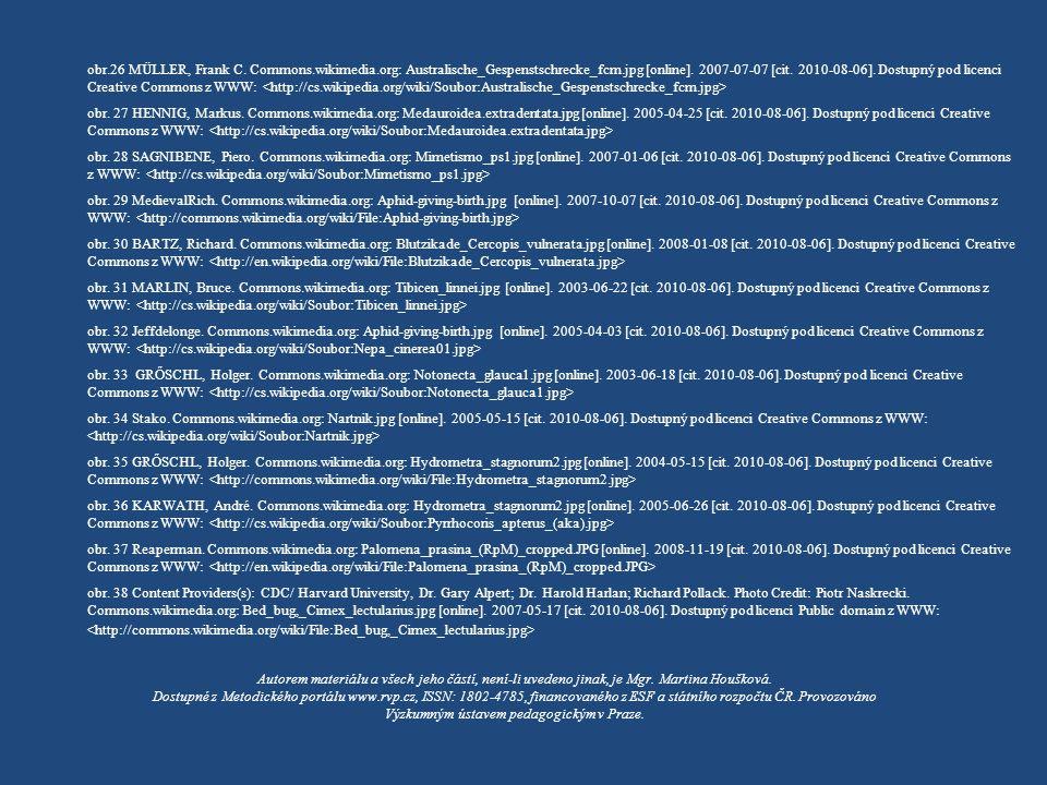  obr.26 MÜLLER, Frank C. Commons.wikimedia.org: Australische_Gespenstschrecke_fcm.jpg [online]. 2007-07-07 [cit. 2010-08-06]. Dostupný pod licenci Cr